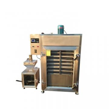 380V/220V Gas/Electric Heating Meat/Sausage Smoke Machine