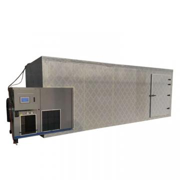 Freeze Dryer Food Processing Machine for Agricultural/Dairy/Vegetable/Fruit/Snack/Rice/Farm/Meat
