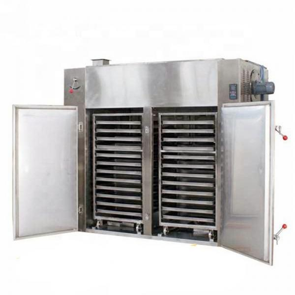 Hot Air Stainless Steel Vegetable Drying Oven