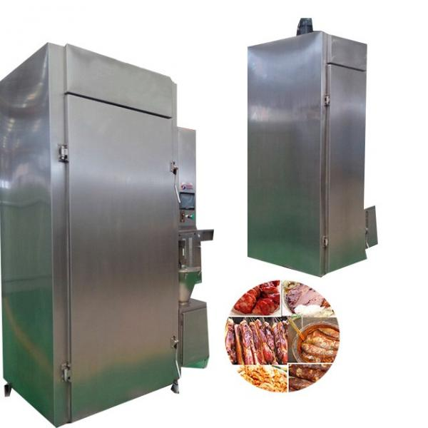 High Quality Smoking Fish Equipment with stainless Steel