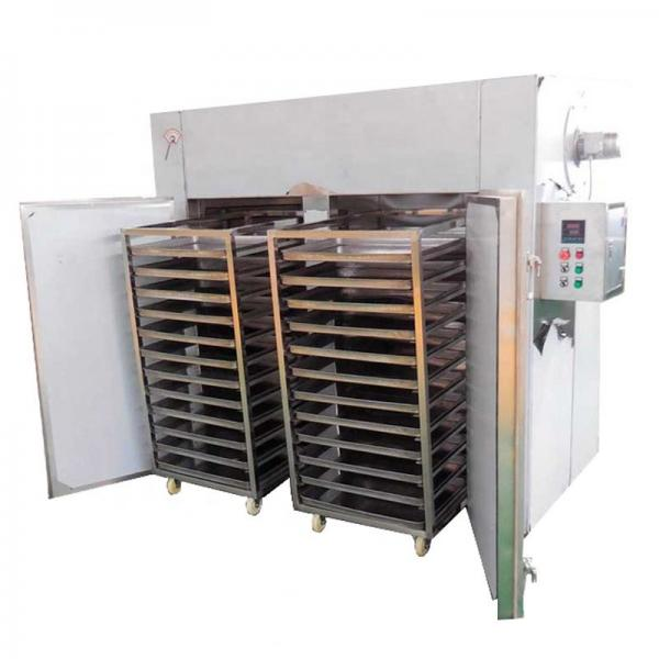 freeze dryer mushroom stainless steel freeze dryer10kg continue freeze dryer