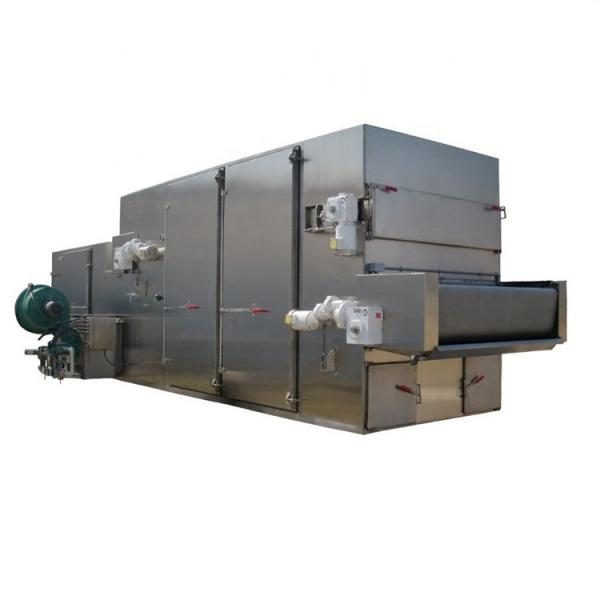 Continuous vacuum drying machine over industrial freeze dryer
